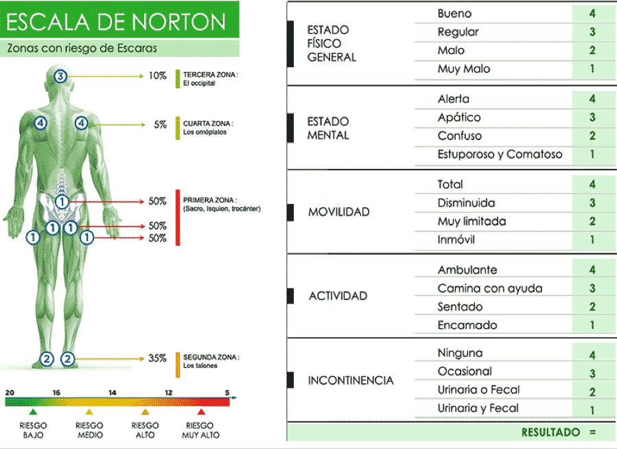 escala de norton para zonas de riesgo de escaras